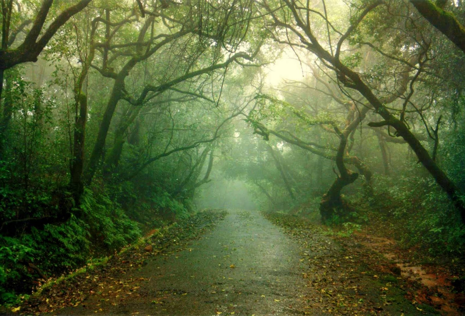 Tour To The Queen Of Hill Stations Mahabaleshwar Sakhideshmukh26